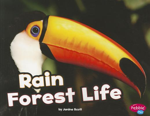 Rain Forest Life By Scott, Janine